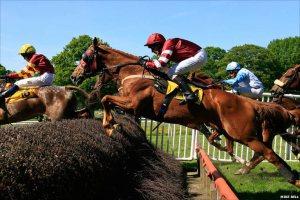 perth horses runnning